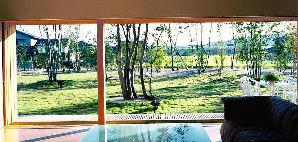 高松の家 室内から庭を望む